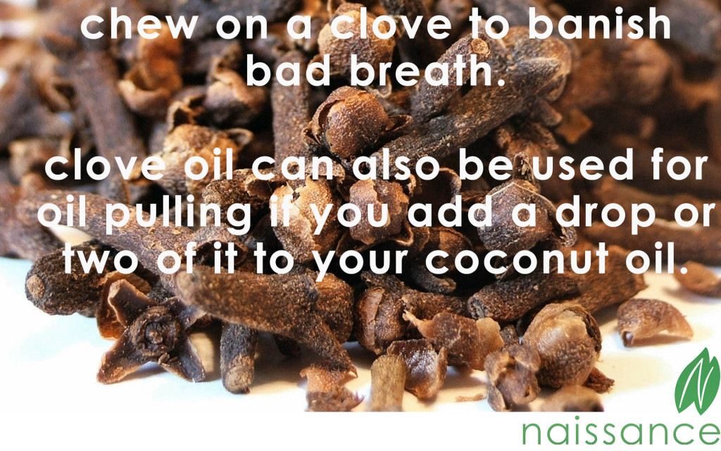 Everything You Need To Know About Clove Oil large